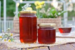 Φιλικό προς το περιβάλλον μέλι στα βάζα γυαλιού Στοκ Εικόνες
