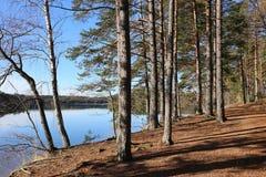 Φινλανδία: Γενικές τοπίο και λίμνη στοκ φωτογραφίες