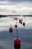 Φινλανδία, Hanko, ηλιοβασίλεμα, κόκκινοι σημαντήρες στον κόλπο Στοκ εικόνα με δικαίωμα ελεύθερης χρήσης