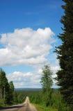 Φινλανδικός δρόμος στο δάσος taiga Στοκ Εικόνα