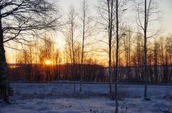 Φινλανδικό Lapland Στοκ φωτογραφίες με δικαίωμα ελεύθερης χρήσης