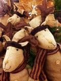 Φιλαράκοι ταράνδων στοκ εικόνες