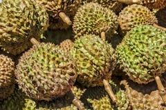 Φιλιππίνες Durian Στοκ εικόνα με δικαίωμα ελεύθερης χρήσης