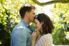 φιλώντας γυναίκα ανδρών με Στοκ Φωτογραφία