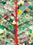 φλέβες φύλλων Στοκ εικόνα με δικαίωμα ελεύθερης χρήσης