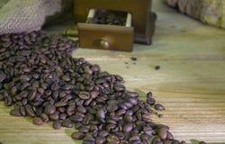 Φλιτζάνι του καφέ, καφές-φασόλια, μύλος καφέ, σάκος καφέ Στοκ Εικόνες