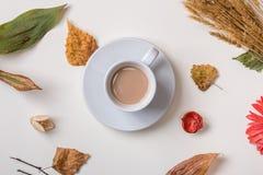 Φλιτζάνι του καφέ με τις ξηρές εγκαταστάσεις φθινοπώρου Στοκ εικόνα με δικαίωμα ελεύθερης χρήσης