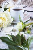 Φλιτζάνι του καφέ πρωινού και όμορφα άσπρα peonies σε έναν άσπρο ξύλινο πίνακα στοκ φωτογραφία