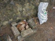 Φλοιοί καρύδων στην εστία Να προετοιμαστεί για το ψήσιμο στη σχάρα κρέατος Πρωτόγονη σχάρα στην Ινδονησία Τούβλα, πέτρες, πλέγμα  στοκ φωτογραφία με δικαίωμα ελεύθερης χρήσης