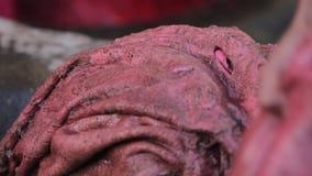 Φλοιός δέρματος και βαφή 7 φιλμ μικρού μήκους