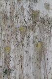 Φλοιώδης ρυπαρή σύσταση Grunge στοκ εικόνες