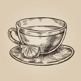 Φλυτζάνι γυαλιού με το σκίτσο λεμονιών Διανυσματική απεικόνιση