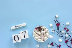 Φλυτζάνι ημερολογιακών στις 7 Ιανουαρίου του κακάου, marshmallows και των μούρων κλάδων στοκ φωτογραφία
