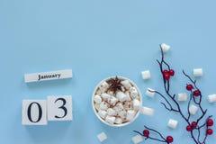 Φλυτζάνι ημερολογιακών στις 3 Ιανουαρίου του κακάου, marshmallows και των μούρων κλάδων στοκ φωτογραφίες με δικαίωμα ελεύθερης χρήσης