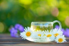 Φλυτζάνι κρυστάλλου με το πράσινο τσάι στον πίνακα Στοκ Εικόνες
