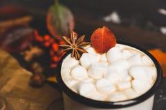 Φλυτζάνι της καυτής σοκολάτας με marshmallows στο αγροτικό ξύλινο υπόβαθρο με τη διακόσμηση φθινοπώρου Στοκ Εικόνα