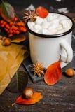 Φλυτζάνι της καυτής σοκολάτας με marshmallows στο αγροτικό ξύλινο υπόβαθρο με τη διακόσμηση φθινοπώρου Στοκ Εικόνες
