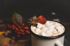 Φλυτζάνι της καυτής σοκολάτας με marshmallows στο αγροτικό ξύλινο υπόβαθρο με τη διακόσμηση φθινοπώρου Στοκ εικόνες με δικαίωμα ελεύθερης χρήσης