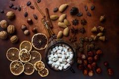 Φλυτζάνι της παραδοσιακού καυτού σοκολάτας ή του κακάου με marshmallow, την κανέλα, τα καρύδια και τα καρυκεύματα στο σκοτεινό πί Στοκ Φωτογραφία