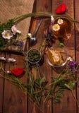 Φλυτζάνι του βοτανικού τσαγιού στο σκοτεινό ηλικίας αγροτικό υπόβαθρο, τοπ άποψη, θέση για το κείμενο, σύνορα Στοκ φωτογραφίες με δικαίωμα ελεύθερης χρήσης