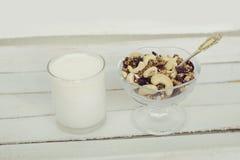 Φλυτζάνι του γιαουρτιού με το granola πρόγευμα υγιές Στοκ Εικόνες