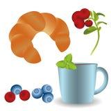 Φλυτζάνι του τσαγιού με φρέσκο croissant, ένα κλαδάκι της μέντας και μούρα διανυσματική απεικόνιση