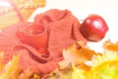 Φλυτζάνι του τσαγιού, φύλλα φθινοπώρου, κόκκινο μαντίλι 1 ζωή ακόμα Στοκ φωτογραφία με δικαίωμα ελεύθερης χρήσης