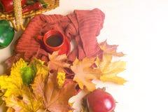 Φλυτζάνι του τσαγιού, φύλλα φθινοπώρου, κόκκινο μαντίλι 1 ζωή ακόμα Στοκ φωτογραφίες με δικαίωμα ελεύθερης χρήσης