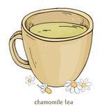 Φλυτζάνι του chamomile τσαγιού Ένα φλυτζάνι των chamomile λουλουδιών Διανυσματική απεικόνιση στο ύφος σκίτσων ελεύθερη απεικόνιση δικαιώματος