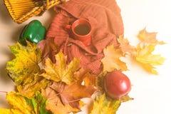 Φλυτζάνι τσαγιού, κόκκινο καρό, λαχανικά σε ένα ψάθινο καλάθι, η κόκκινη Apple, πράσινο πιπέρι κουδουνιών, φύλλα σφενδάμου φθινοπ Στοκ Φωτογραφία