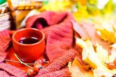 Φλυτζάνι τσαγιού, κόκκινο καρό, λαχανικά σε ένα ψάθινο καλάθι, η κόκκινη Apple, πράσινο πιπέρι κουδουνιών, φύλλα σφενδάμου φθινοπ Στοκ Εικόνα