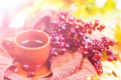 Φλυτζάνι τσαγιού, κόκκινο καρό, λαχανικά σε ένα ψάθινο καλάθι, η κόκκινη Apple, πράσινο πιπέρι κουδουνιών, φύλλα σφενδάμου φθινοπ Στοκ Φωτογραφίες