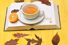 Φλυτζάνι τσαγιού με τον ατμό στις σελίδες βιβλίων και φύλλων Στοκ Φωτογραφία