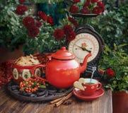 Φλυτζάνι φθινοπώρου του τσαγιού και των μπισκότων στοκ φωτογραφία