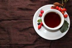 Φλυτζάνι φθινοπώρου του τσαγιού με τα διαφορετικά μούρα στοκ φωτογραφίες