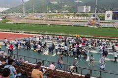 φλυτζάνι Elizabeth ΙΙ racecourse βασίλισσ&a στοκ φωτογραφίες με δικαίωμα ελεύθερης χρήσης