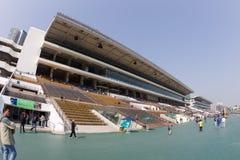 φλυτζάνι gome raceday στοκ εικόνες με δικαίωμα ελεύθερης χρήσης