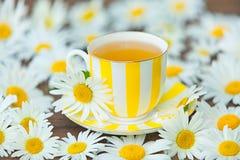 Φλυτζάνι Porcelainl με το πράσινο τσάι στον πίνακα Στοκ εικόνες με δικαίωμα ελεύθερης χρήσης