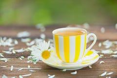 Φλυτζάνι Porcelainl με το πράσινο τσάι στον πίνακα Στοκ Εικόνες