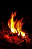 φλόγα εστιών Στοκ Εικόνα