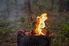 Φλόγα μιας πυρκαγιάς σε μια σχάρα σε ένα πράσινο δάσος στοκ φωτογραφία