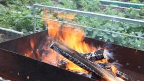 Φλόγα που αυξάνεται από το κάψιμο του ξύλου και του ξυλάνθρακα σε έναν mangal στον κήπο απόθεμα βίντεο