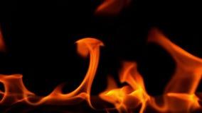 Φλόγα πυρκαγιάς στο μαύρο υπόβαθρο, σε αργή κίνηση απόθεμα βίντεο