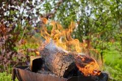 φλόγα πυρκαγιάς Στοκ εικόνα με δικαίωμα ελεύθερης χρήσης