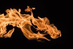 Φλόγα της πυρκαγιάς σε ένα μαύρο υπόβαθρο 4 Στοκ Φωτογραφία
