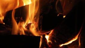 Φλόγες μιας εστίας φιλμ μικρού μήκους