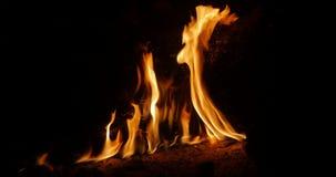 Φλόγες πυρκαγιάς στο σκοτάδι φιλμ μικρού μήκους