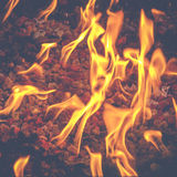 Φλόγες στο κοίλωμα πυρκαγιάς τη νύχτα Στοκ Εικόνα