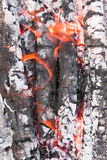 φλόγες τέφρας Στοκ εικόνες με δικαίωμα ελεύθερης χρήσης