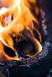 Φλόγες της πυρκαγιάς από τον ξυλάνθρακα ως υπόβαθρο Στοκ Εικόνα